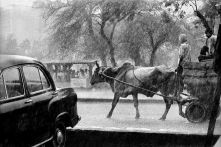 INDIA. Delhi. Monsoon downpour, Bahadur Shar Zafar Marg. 1984.