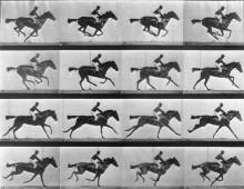Eadweard-Muybridge-horse-galloping-1024x789