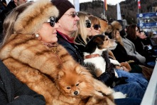 SWITZERLAND. St Moritz. Snow Polo World Cup. From 'Luxury'. 2011.