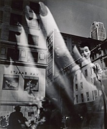 828156001485528419reflections_5thavenue