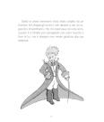 30_piccolo principe