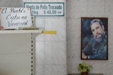 Fidel Che (Sara)-15